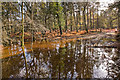 SU2705 : Warwickslade Cutting: flood plain by Peter Facey