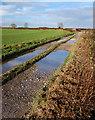 TA2034 : Bridleway near Sproatley by Paul Harrop
