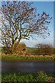 TA2035 : Lane near Sproatley by Paul Harrop