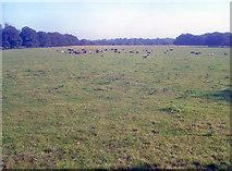 SK4663 : Hardwick Country Park by Trevor Rickard
