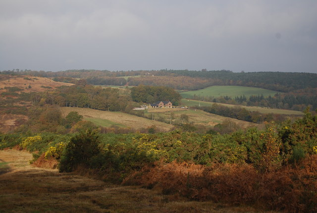 View across Ashdown Forest to Crabtree Farm