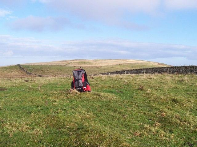 Summit of Lumsden Hill