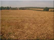 SK4862 : Arable land near Peartree Lane by Trevor Rickard