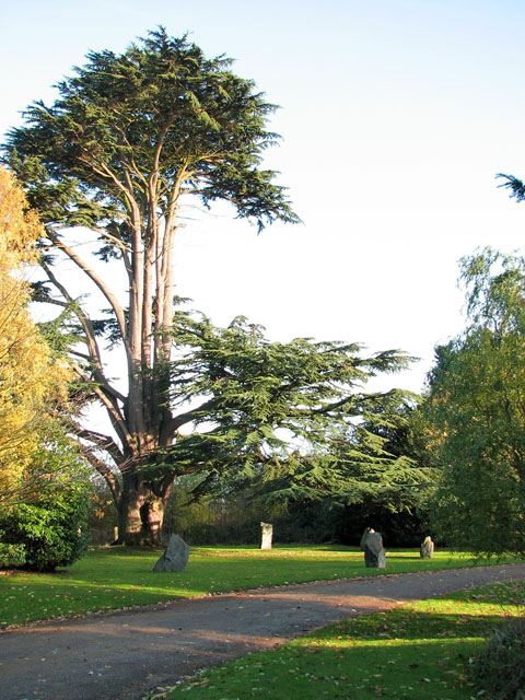 Mangreen Health & Healing Trust - the stone circle