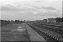 SO9596 : Derelict remains of Bilston Central Station looking towards Wednesbury and Birmingham Snow Hill. 1978 by Tim Marshall