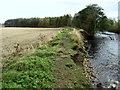NZ2214 : Riverbank Erosion on the Tees by Chris Heaton