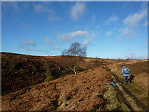SK2775 : Walking up the Bar Brook valley by Peter Barr