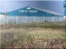 ST1973 : Port of Cardiff by Colin Smith