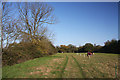 TL9468 : Footpath near Stowlangtoft by Bob Jones