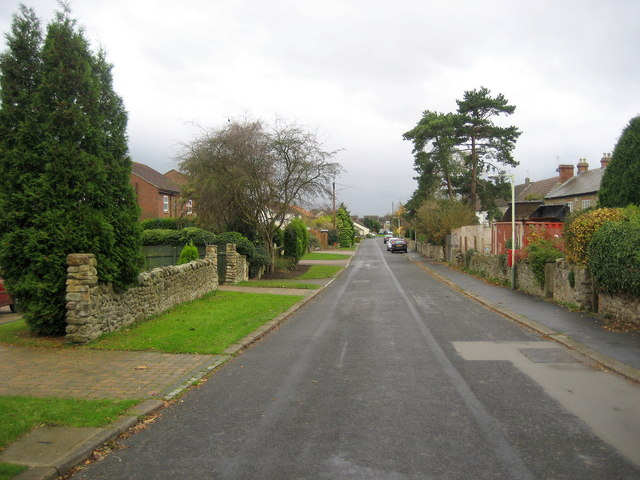 In Low Coniscliffe