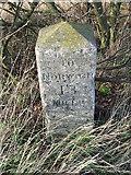 TM1888 : Old Milestone by Keith Evans