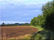 SU5894 : Farmland, Dorchester by Andrew Smith