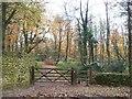 SP1733 : Path into Park Plantation. by Michael Dibb