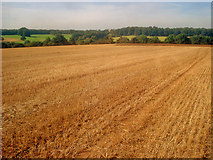 SK4764 : Stubble field north of Norwood - 1 by Trevor Rickard