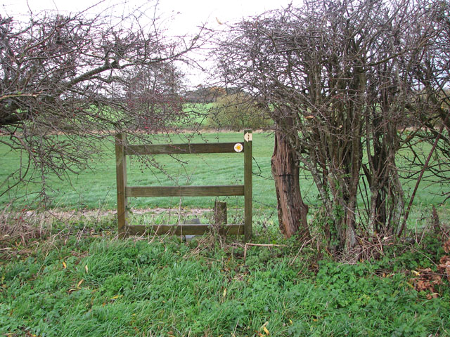 Footpath marker in hedge