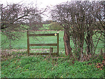 TM2384 : Footpath marker in hedge by Evelyn Simak