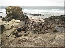 SW8263 : Rocks off Trevelgue Head by Philip Halling