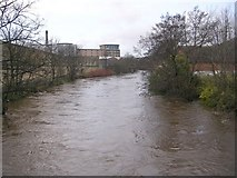 SE1537 : River Aire - Otley Road by Betty Longbottom