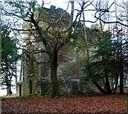 NS3578 : Kilmahew Castle by Lairich Rig