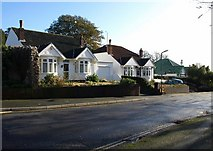 SX9065 : Bungalows on Teignmouth Road, Torquay by Derek Harper