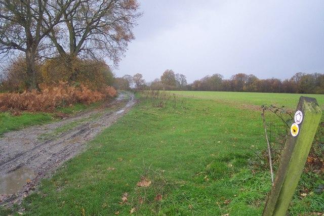 High Weald Landscape Trail heading to Goudhurst