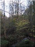 NY8563 : Threepwood Burn (2) by Mike Quinn