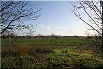 SU5393 : Towards West Field by Bill Nicholls