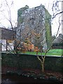 R6382 : O'Grady's tower house, Tuamgraney by Eirian Evans