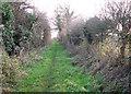 TG2102 : Public bridleway to Mulbarton by Evelyn Simak