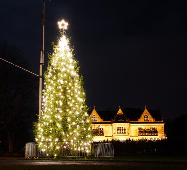 Christmas Tree Bangor 169 Rossographer Cc By Sa 2 0