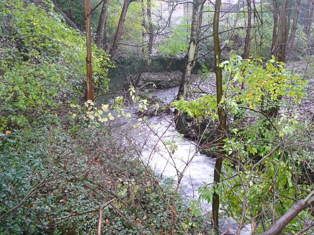 The River Ribble at Swan Bank, Cartworth (Holmfirth)
