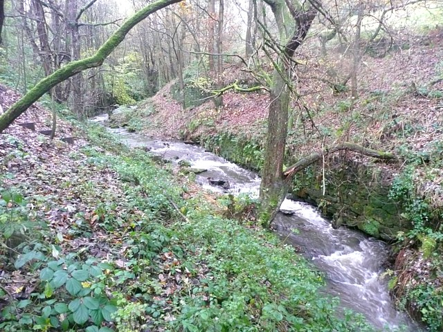 The River Ribble above Swan Bank, Cartworth (Holmfirth)
