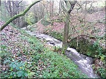 SE1407 : The River Ribble above Swan Bank, Cartworth (Holmfirth) by Humphrey Bolton