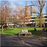 TQ2574 : Tree seat, King George's Park by Derek Harper