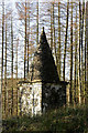 NY3289 : A monument on the Westerhall Estate, Bentpath by Walter Baxter