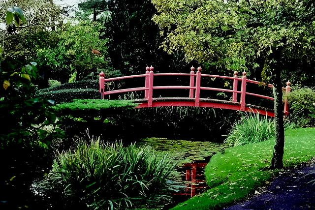 Kildare - Japanese Gardens Bridge of Life