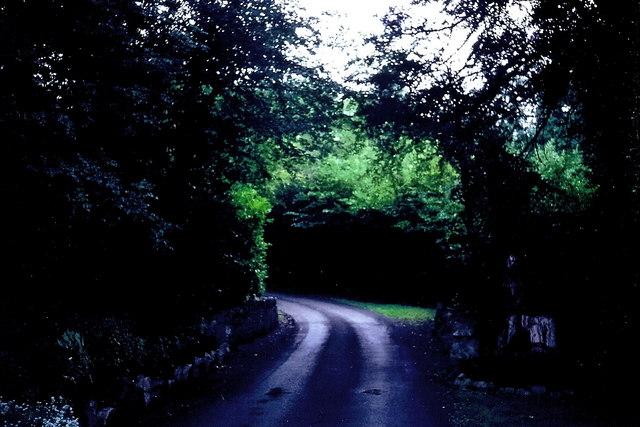 Castledaly Manor - Entrance drive