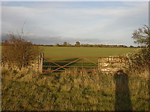 SP2504 : Field gate heading from Kencot to Alvescot by andrew auger