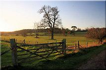 TL8162 : Gateway in Ickworth Park by Bob Jones