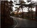 SZ0792 : Talbot Woods: Talbot Heath School by Chris Downer