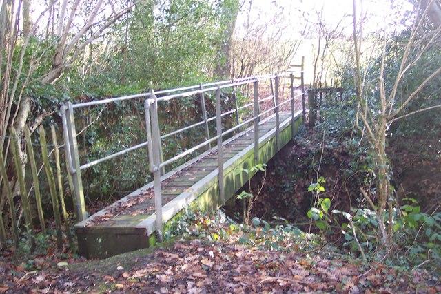 Footbridge in Mouseden Wood by David Anstiss