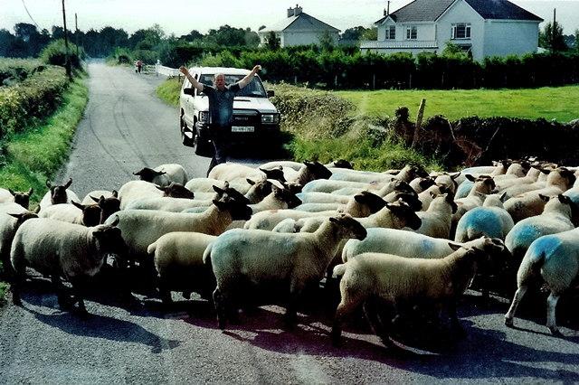 Rural road traffic jam between High Street & R357