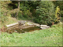 ST2896 : Stepping stones across Blaen Bran, Cwmbran by Jaggery