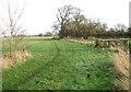 TM1598 : Public footpath to Wymondham Road by Evelyn Simak