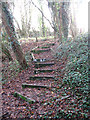 TM1598 : Steps up from the railway cutting by Evelyn Simak