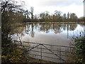 SJ4259 : A field in flood near Aldford - November 2009 by John S Turner