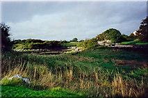 M3810 : Kinvarra - NE view from castle parking lot by Joseph Mischyshyn