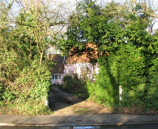 Pink cottage behind high hedge