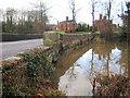 SJ4259 : Flood - north side of Aldford Bridge by John S Turner