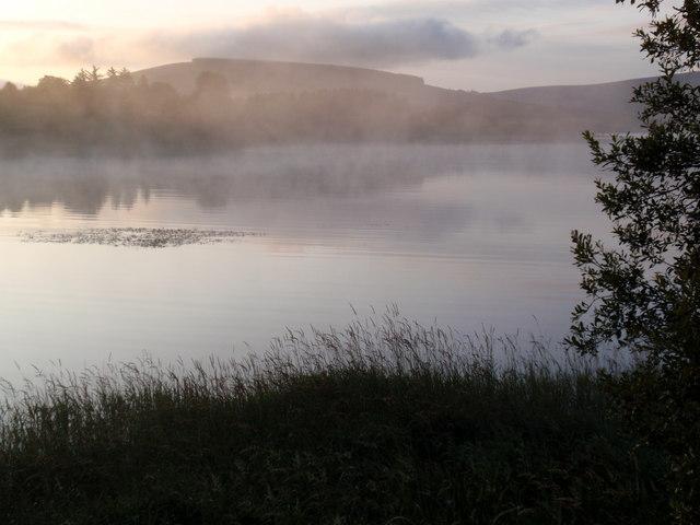 Mist on Blessington Lake